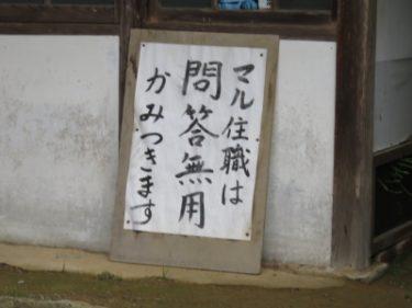 【おもしろ貼り紙・おもしろ幕 No.0001】住職が問答無用で噛みついてくるお寺