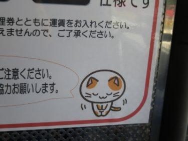 【オジギビト No.0010】ネコちゃんがバスの中でペコリ