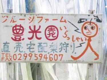 【クソキャラ No.0010】人面フルーツの叫び