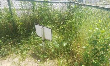 【おもしろ看板 No.0082】雑草に阻まれ全く役目を果たせない看板