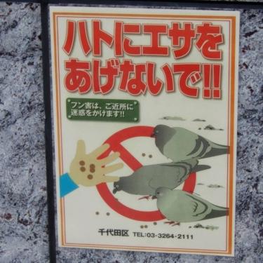 【エサやり禁止看板 No.0002】鳩3羽が微妙に描き分けられているところが◎